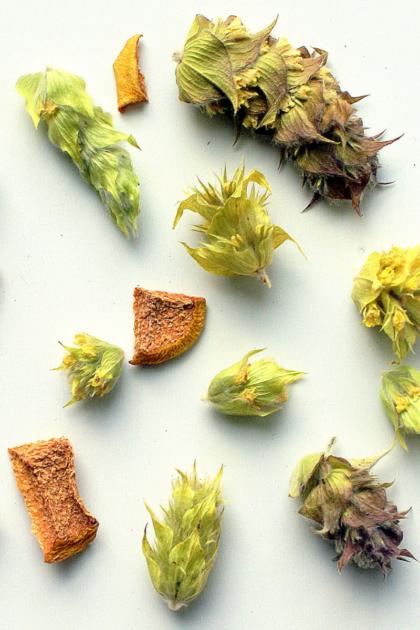 Βοτανικό μίγμα feel good, όλα τα συστατικά του απλωμένα σε άσπρη επιφάνεια, τσάι του βουνού και κυδώνι, αποξηραμένα